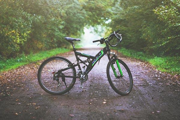 Noleggiobike