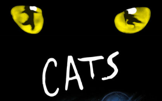 Musical Cats <p> 22.07.18